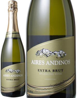 アイレス・アンディノス エクストラ・ブリュット NV <白> <ワイン/アルゼンチン/スパークリング>
