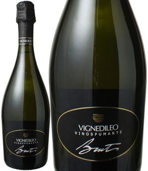 ヴェルディッキオ ヴィーノ・スプマンテ ブリュット NV ヴィニェディレオ(トレ・カステッリ) <白> <ワイン/スパークリング>